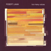 Too Many Voices — Robert Lamm