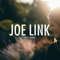 She's a Wonder — Joe Link