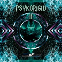 Psykorigid 2 - Compiled by DJ Psykelo — сборник