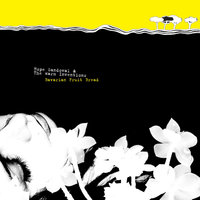 Bavarian Fruit Bread — Hope Sandoval & The Warm Inventions