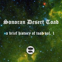 A Brief History of Toad, Vol. 1 — Sonoran Desert Toad