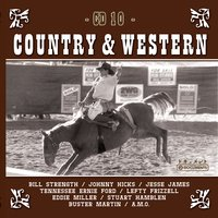 Country Hits Vol. 10 — Sampler