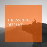 The Essential Deep Live — Deep Live