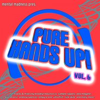 Mental Madness Pres. Pure Hands Up! Vol. 6 — сборник