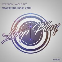 Waiting For You — Veltron