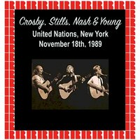 United Nation Assembly, New York, 1989 — Crosby, Stills, Crosby, Stills, Nash & Young, Nash & Young