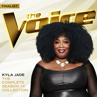 The Complete Season 14 Collection — Kyla Jade