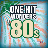 One Hit Wonders Of The 80s Vol. 2 — Count Dee's Hit Explosion