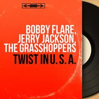 Twist in U. S. A. — Bobby Flare, Jerry Jackson, The Grasshoppers