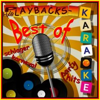 Best of Halb Playbacks, Karaoke, Karneval, Schlager, Party Hits — Schmitti, De Fleech, Der Bürgermeister, KTK, Helga Brauer, Alpenkölsch & DJ Happy Vibes