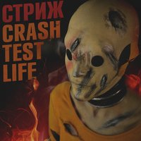 Crash Test Life — Стриж