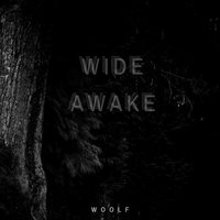 Wide Awake — Woolf