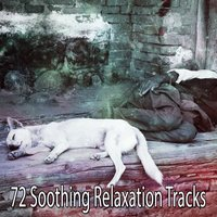72 Soothing Relaxation Tracks — Relaxing Music Therapy