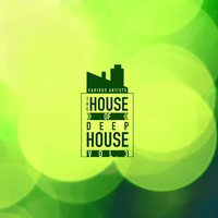 The House of Deep-House, Vol. 3 — сборник