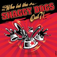 Who Let the Shaggy Dogs out? — Shaggy Dogs