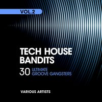 Tech House Bandits, Vol. 2 (30 Ultimate Groove Gangsters) — сборник