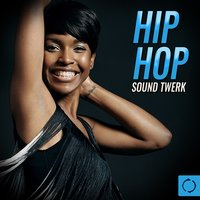 Hip Hop Sound Twerk — сборник