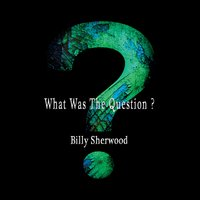 What Was the Question? — Billy Sherwood