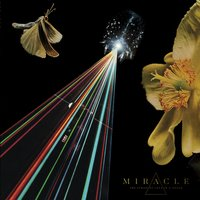 The Parsifal Gate - Single — Miracle
