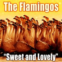 Sweet and Lovely — The Flamingos
