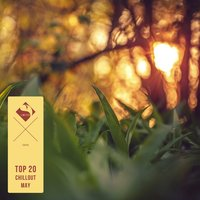 Top 20 Chillout May — сборник