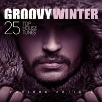 Groovy Winter (25 Top House Tunes) — сборник