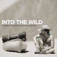 Into the Wild — Michael Brook