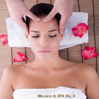 Wellness & Spa, Vol. 4 (Relax Your Mind) — сборник
