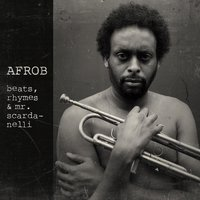 beats, rhymes & mr. Scardanelli — Afrob