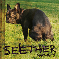 Seether: 2002-2013 — Seether
