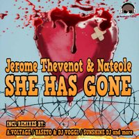She Has Gone — Jerome Thevenot, Nateole