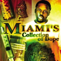 Miami's Collection of Dope — Miami the Most