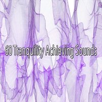 60 Tranquility Achieving Sounds — Deep Sleep Meditation
