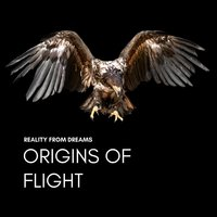 Origins of Flight — Reality from Dreams