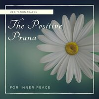 The Positive Prana - Meditation Tracks For Inner Peace — Divinity and Devotion Records, Relaxing Mandala Co, Alluring Melody Productions