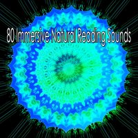 80 Immersive Natural Reading Sounds — Music for Deep Meditation