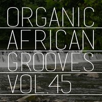 Organic African Grooves, Vol.45 — сборник