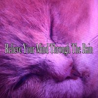 Relieve Your Mind Through The Rain — Meditation Rain Sounds