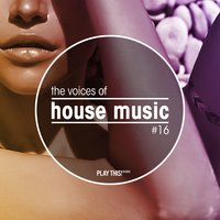 The Voices of House Music, Vol. 16 — сборник