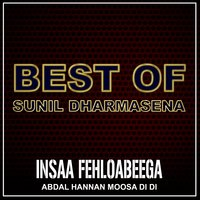 Insaa Fehloabeega - Single — Abdal Hannan Moosa Di DI