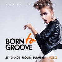 Born To Groove (25 Dance Floor Burners), Vol. 2 — сборник