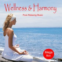Wellness and Harmony — Jean-Paul Genré, Mystic Mood Orchestra, Jean-Paul Genre & Mystic Mood Orchestra