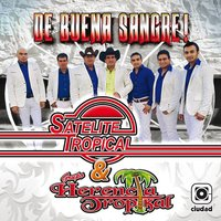 De Buena Sangre! — Satelite Tropical, Grupo Herencia Tropical, Satelite Tropical, Grupo Herencia Tropical