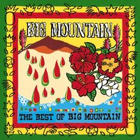 The Best Of Big Mountain — Big Mountain