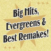 Big Hits, Evergreens & Best Remakes! — сборник