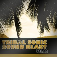 Tribal Sonic Soundblast,Vol.22 — сборник