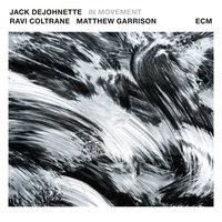 In Movement — Jack DeJohnette, Ravi Coltrane, Matt Garrison