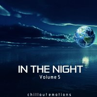 In the Night, Vol. 5 — сборник