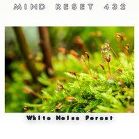 White Noise Forest — Mind Relax 432
