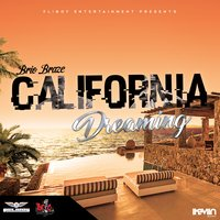 California Dreaming — Brio Braze